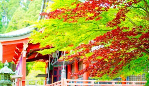 比叡山の紅葉2019年の時期は?10月上旬現在の状況から見頃を予測!