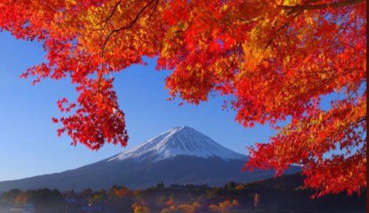 河口湖の紅葉2019年の見ごろ時期は?富士河口湖紅葉まつり情報紹介!