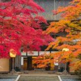 高野山紅葉