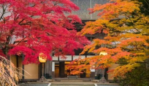 高野山の紅葉2020の見ごろはいつからいつまで?10月の状況から時期を予想!