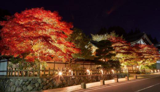 高野山紅葉のライトアップの時間と2019の時期はいつからいつまで?