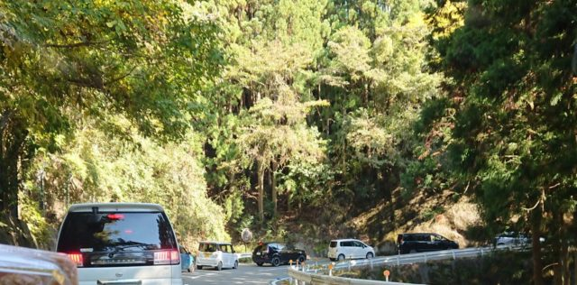 高野山紅葉渋滞