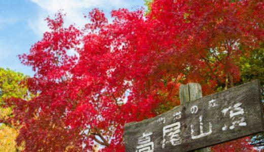 高尾山の紅葉の見頃時期はいつからいつまで?2019現在の状況から見ごろを予想!