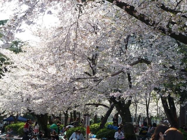 鶴舞公園3