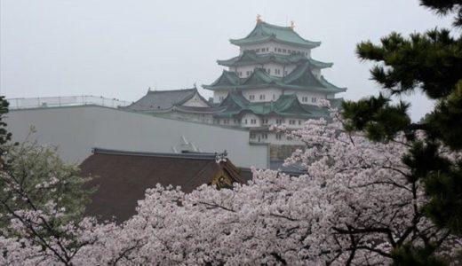 名古屋城の桜2020見頃はいつ?現在の開花状況から満開を予想!