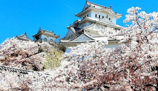 姫路城の桜(花見)の駐車場は!?混雑回避と時間に注意【土日行く人は必見!】