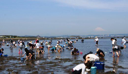 東京の潮干狩り2020の時期はいつから?狙い目や適した日を紹介!