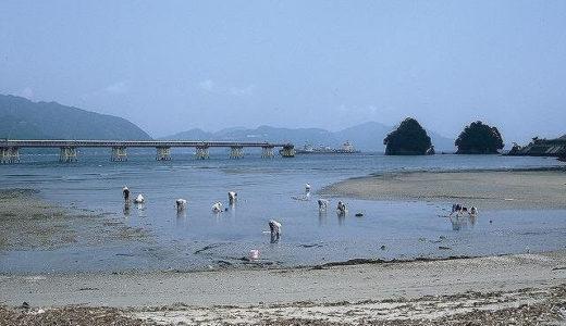潮干狩り愛知県の2021無料スポットを紹介!三重県の穴場も!