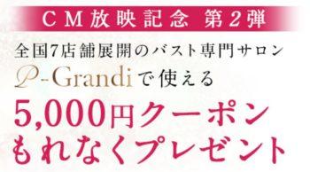 PGブラ5000円クーポン