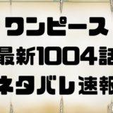ワンピース 1004話話考察 ONE PIECE