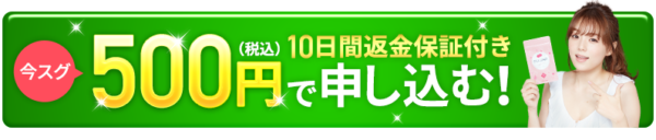 フワップ500円10日間返金保証あり