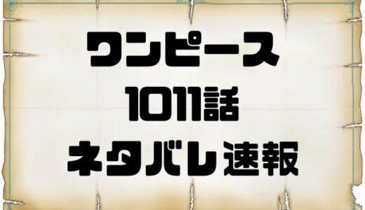 ワンピース1011話ネタバレ展開考察速報!ルフィ対カイドウついに一騎打ち!!