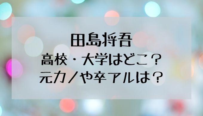 田島将吾の高校・大学